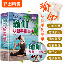 Free video of authentic yoga from novice to expert Yoga Book Beginner zero basic course full illustration of slimming and weight loss beginner Yin Yoga Pilates course fitness Book Women's book bestseller
