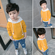 Children's sweatshirt OTHER Hooded sweater 2017