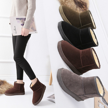 New Korean plush and thickened women's Boots