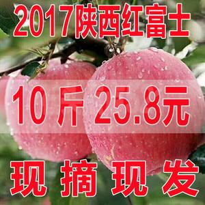 现摘陕西红富士礼泉苹果10斤包邮脆甜丑苹果水果当季新鲜一箱吃的红富士