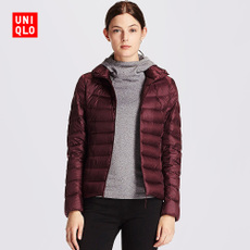 Женский пуховик Uniqlo ArgumentException: Invalid authentication