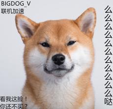 Ускорение и оптимизация сети «Bigdog-v» PS4