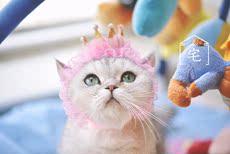 Заколки, Резинки для собак House cat