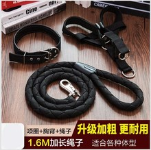 Corgi cat rope extended strong dog traction rope large dog golden fur special bear dog chain Bomei suit
