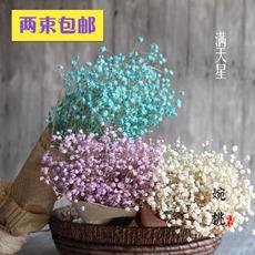 Засушенные цветы Wan Tao Diy
