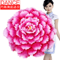 Танцевальный инвентарь Dance Zi yan