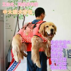 Beijing guard
