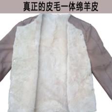 Куртка Fox, Dan