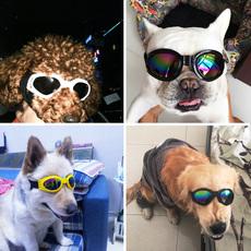 Одежда и аксессуары для собак Pet