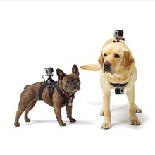 GoPro dog with hero6/5 dog chest back strap brackets, small ant 4K Sports Camera Accessories PET strap
