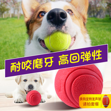 Dog toy ball bite resistant golden fur Teddy grinding tennis pet puppy small dog toy pet ball