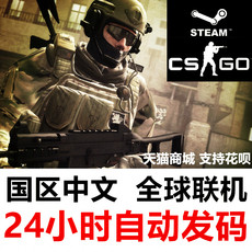 Компьютерная игра Steam CS GO Csgo