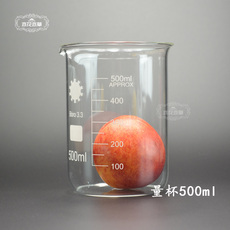 OTHER DIY 500ml